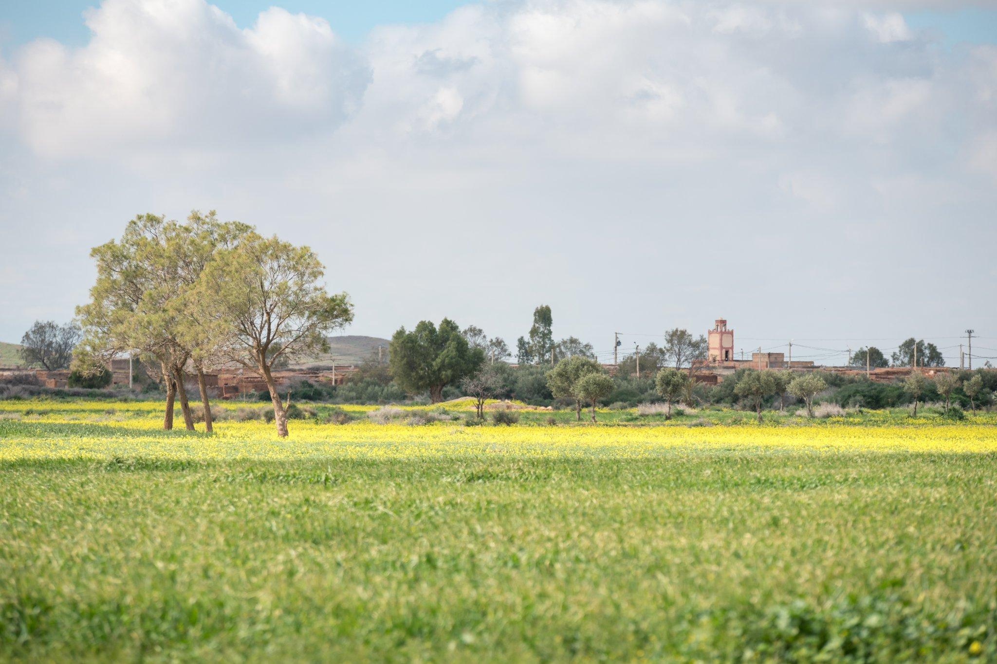Photographe Lyon Villeurbanne - photo paysage voyage Maroc - galerie